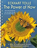 img - for The Power of Now 2017 Engagement Datebook Calendar book / textbook / text book