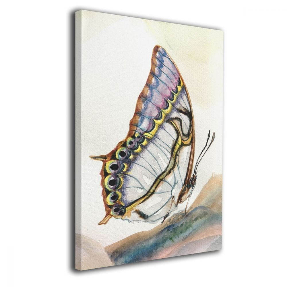 TRdY Page Animal Butterfly Painted Canvas Inner Framed Wall Decor Modern Artwork for Office Home Decor Pictures Ready to Hang for Living Room Bathroom