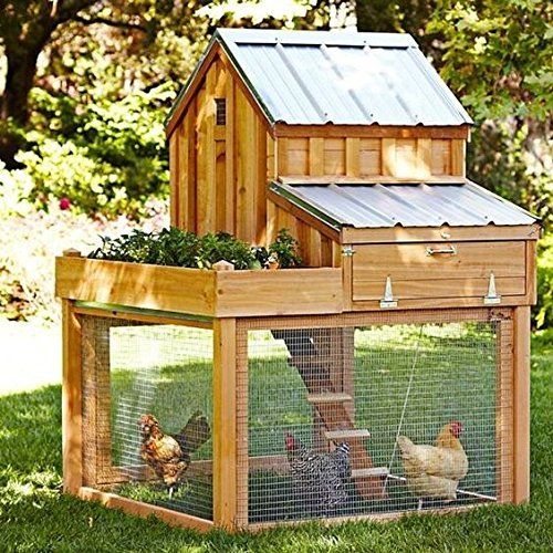 36inch Hardware Cloth 100 ft 1/4 Mesh Galvanized Welded Wire 23 gauge Metal Roll Vegetables Garden Rabbit Fencing Snake Fence for Chicken Run Critters Gopher Racoons Opossum Rehab Cage Wire Window by AMAGABELI GARDEN & HOME (Image #4)