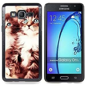"""Qstar Arte & diseño plástico duro Fundas Cover Cubre Hard Case Cover para Samsung Galaxy On5 O5 (Gatitos lindos"""")"""
