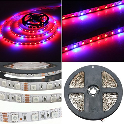 AUDEW 6.6ft 4:1 5050 Grow LED Strip Light Aquarium Greenhouse Hydroponic Plant 12V 12W?2M?