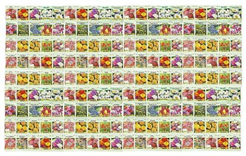 Set of 200 Assorted Valley Green Flower Seed Packets! Flower