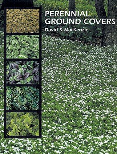 Read Online Perennial Ground Covers pdf epub