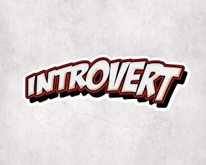 """Introvert word, Laptop Sticker and Decal, Macbook Decal, Car Decal,Bottle Decal,Vinyl Decal with 4"""", 3 Pack"""