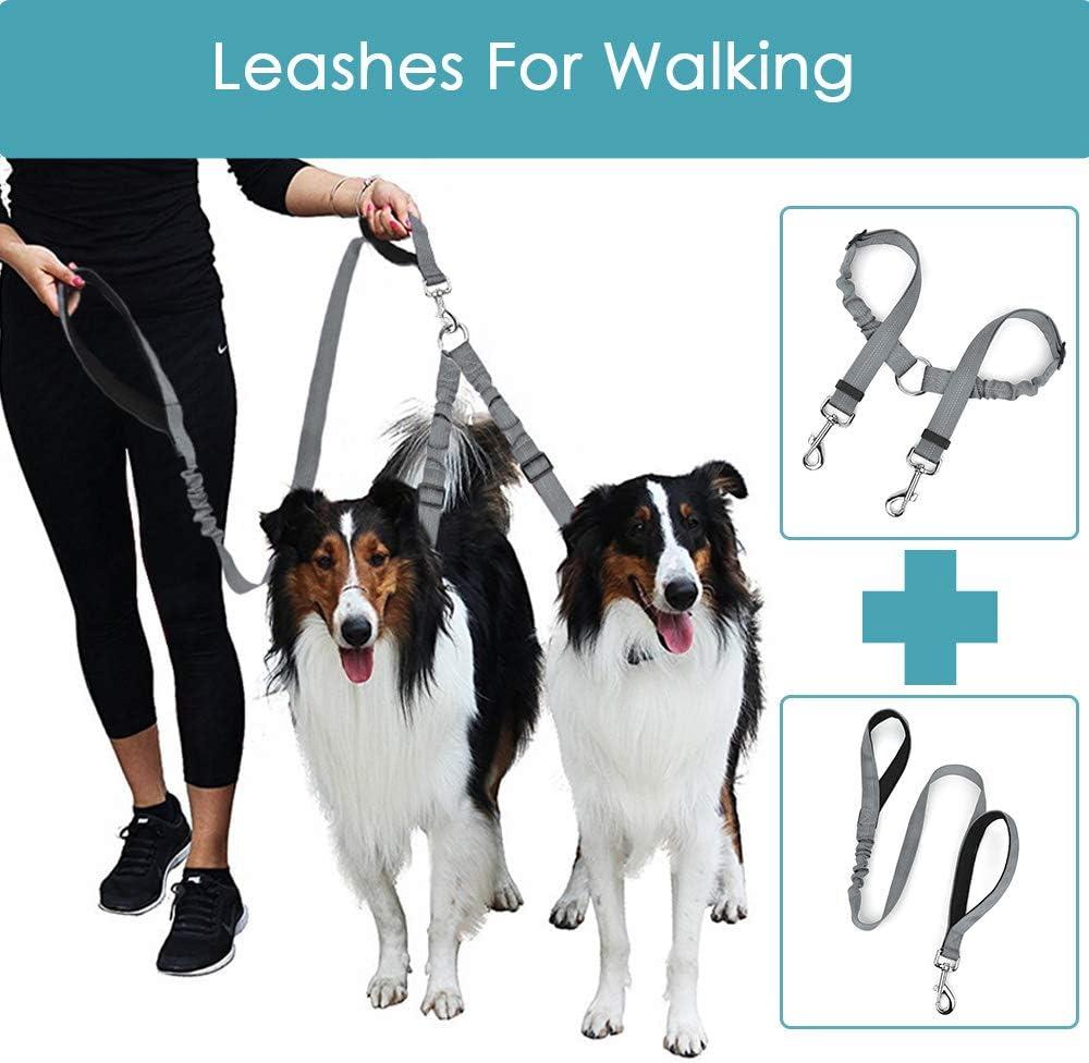 abnehmbare Doppel-Autositzgurt elastisch verstellbar Haustierleine f/ür Zwei Hunde Lukovee Doppel-Hunde-Sicherheitsgurt-Leine Set reflektierende Streifen