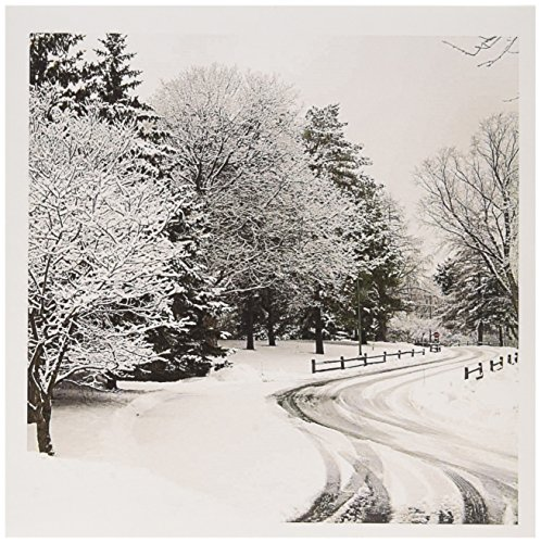 - 3dRose Winter lane, rail fence, snow covered trees - US24 BFR0115 - Bernard Friel - Greeting Cards, 6 x 6 inches, set of 12 (gc_91326_2)