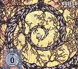 (Cd\Vd) Spiral Shadow