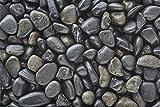 BLACK Polished Pebbles/Gravel (5lbs Bag) 3/8'' Aquarium, Terrarium, Decoration, Landscape, Vase or Pot Fill