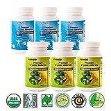 FEBICO Organic Spirulina & Organic Chlorella Tablets 500mg: Highest Quality Green Algae. Contains CGF SGF Chlorophyll-Set of 6 For Sale