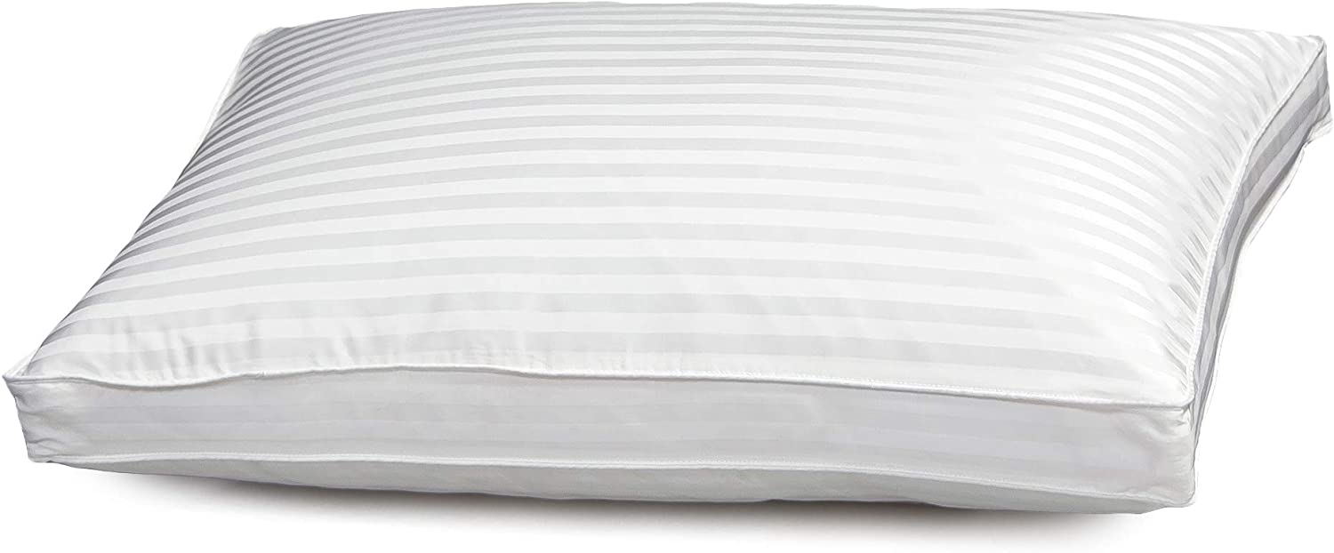 Blue Ridge Home Fashions 500 Thread Count Silk/Cotton Damask Stripe Double Cover Side Sleeper Pillow, King, White