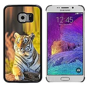 Be Good Phone Accessory // Dura Cáscara cubierta Protectora Caso Carcasa Funda de Protección para Samsung Galaxy S6 EDGE SM-G925 // tigr zver vzglyad zelen