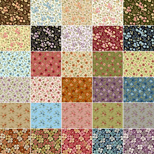Amazon.com: Petals 30 Fat Quarters Fabric Bundle Quilting Treasures : quilting treasures - Adamdwight.com