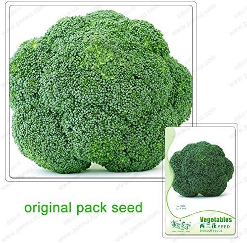 60 semillas / pack, semillas de brócoli, coliflor, flores verdes ...