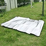 AGPtek 200*150 CM Waterproof Foldable Double-Sided Aluminum Foil Camping Cushion Moisture-proof Mat Blanket Outdoor Picnic Pad