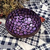 BonNoces Hand-painted Candy Bowl-Natural Coconut Shell Bowl-Freehand sketching colorful decoration Unique gift 1pcs (Purple)