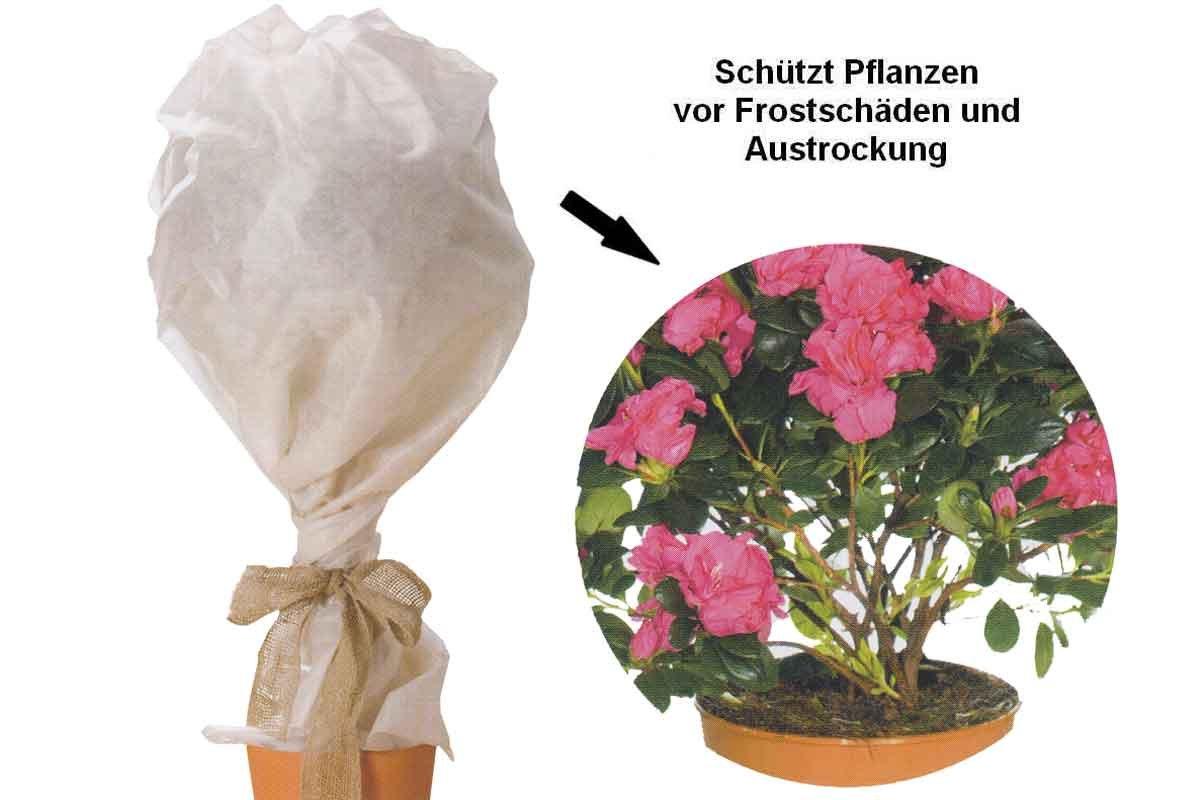 Florabest Pflanzen- Frostschutzvlies -Schützt Pflanzen vor ...