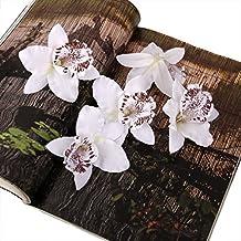 20pcs 8cm Artificial Silk Orchid Dendrobium Flower Heads Decor -White