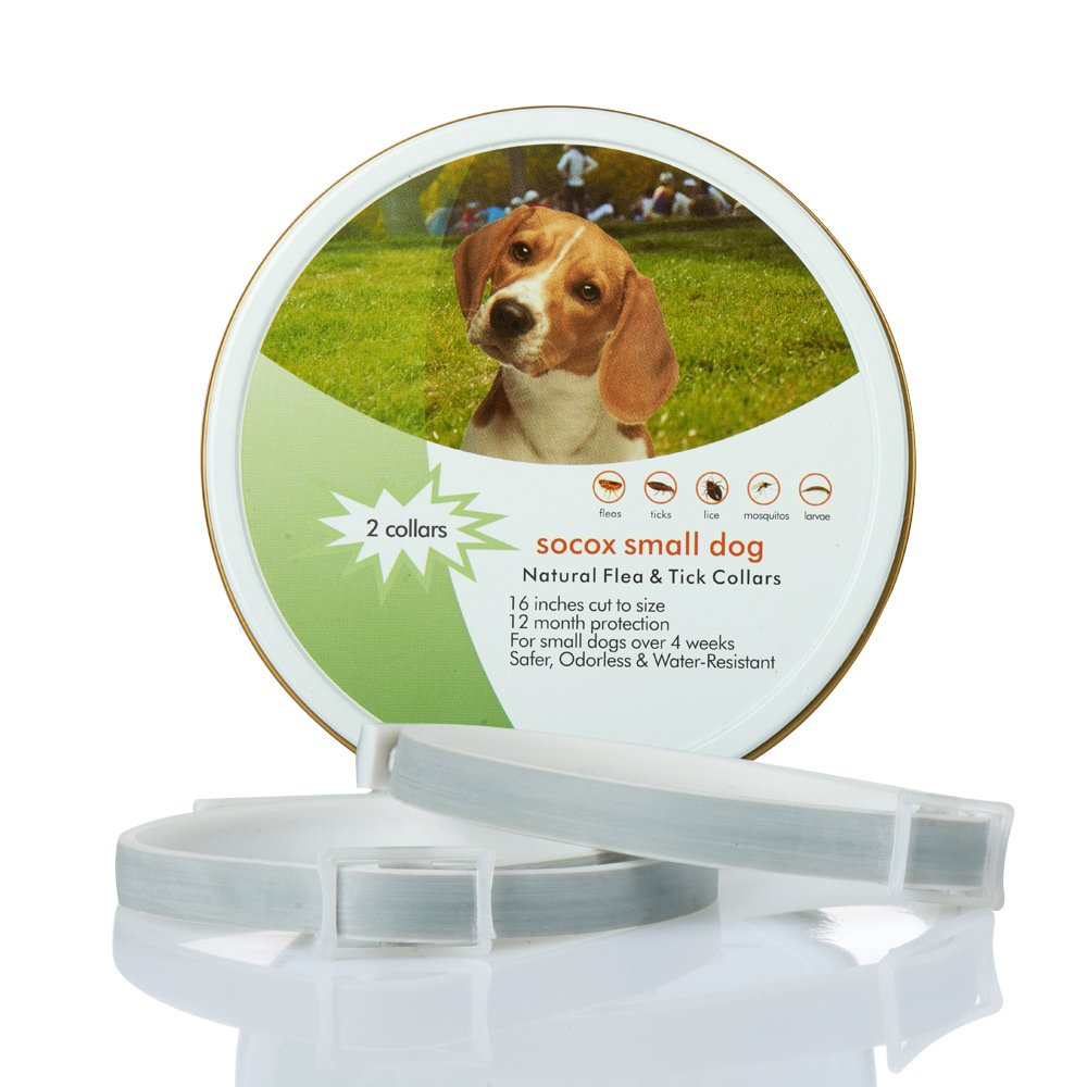 Natural Flea Prevention Collar for Small Dogs | 2 Collars Prevents, Kills, Repels and Removes Pests | 16 Inches Adjustable Collars for 12 Months of Protection