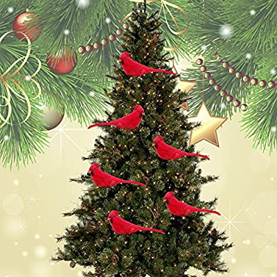 Amazon Com Greenwish 12 Pcs Red Birds Cardinal With Clip On Christmas Tree Decoration Artificial Red Birds With Feathers For Wreath Ornaments Kitchen Dining