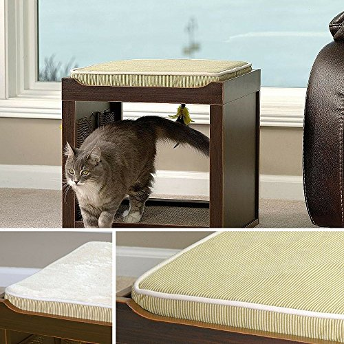 luxury-cat-beds-ebook-how-to-train-your-cat-by-rio-centerkitty-cubememory-foam-kitty-bedcat-play-cub