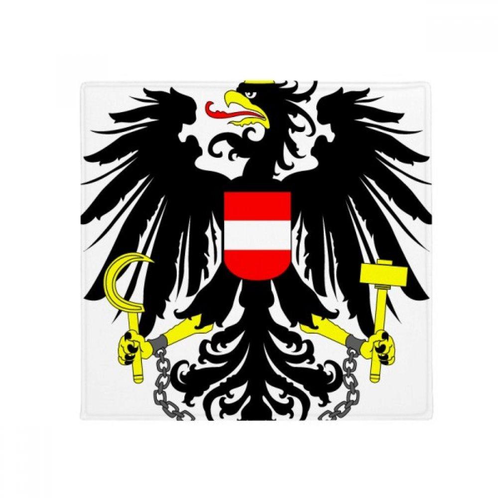 DIYthinker Austria National Emblem Country Anti-Slip Floor Pet Mat Square Home Kitchen Door 80Cm Gift