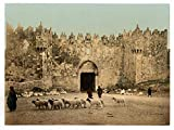 Historic Photos The Damascus Gate, Jerusalem, Holy Land