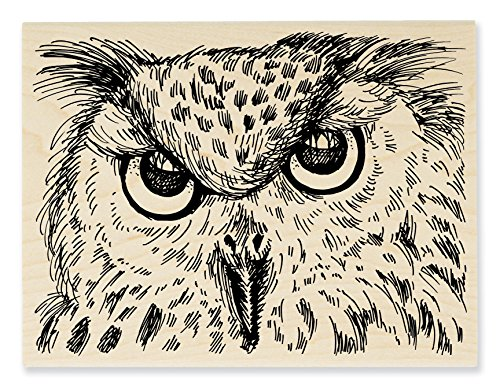 Stampendous R268 Rubber Stamp, Look Into My Eyes (Halloween Looks)