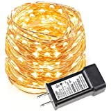 LE 33ft LED String Lights, 100 LEDs Copper Wire Lights, Flexible Fairy Lights, Warm White, Indoor and Outdoor...