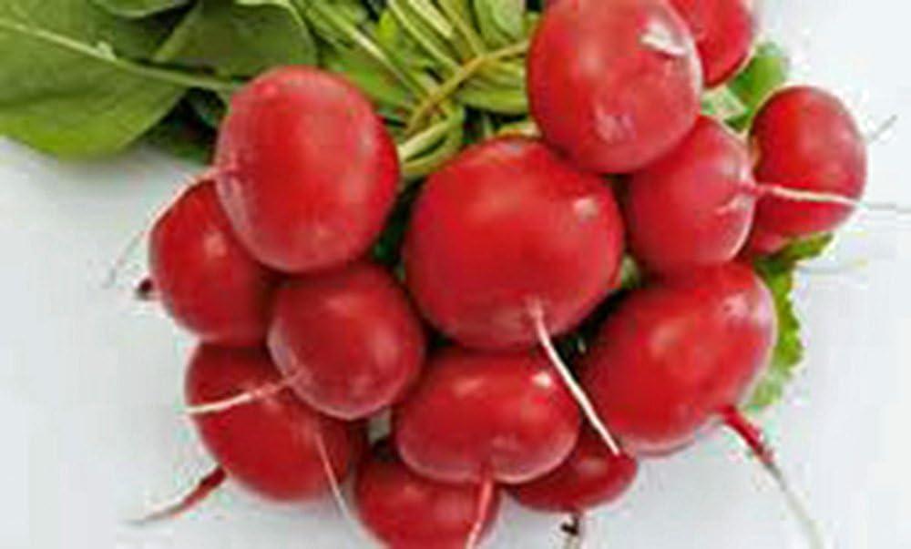 Root Vegetable Seed Garden Collection 5, Heirloom, Seeds, 5 Top Varieties, Country Creek Acres