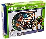 4D: Tarantula Spider Anatomy Model