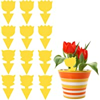Fruit Fly Traps,Sticky Fly Traps for Indoor/Outdoor Use,12Pcs Dual-Sided Yellow Fungus Gnat Mosquito Trap for Indoor…