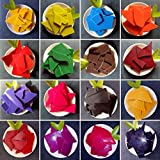 LFM Wax Dye- Candle Wax - Candle Making -Candle Dye - 26 Dye Colors - A Great Choice of Colors - 0.15 Ounce Each Color - Candle DIY