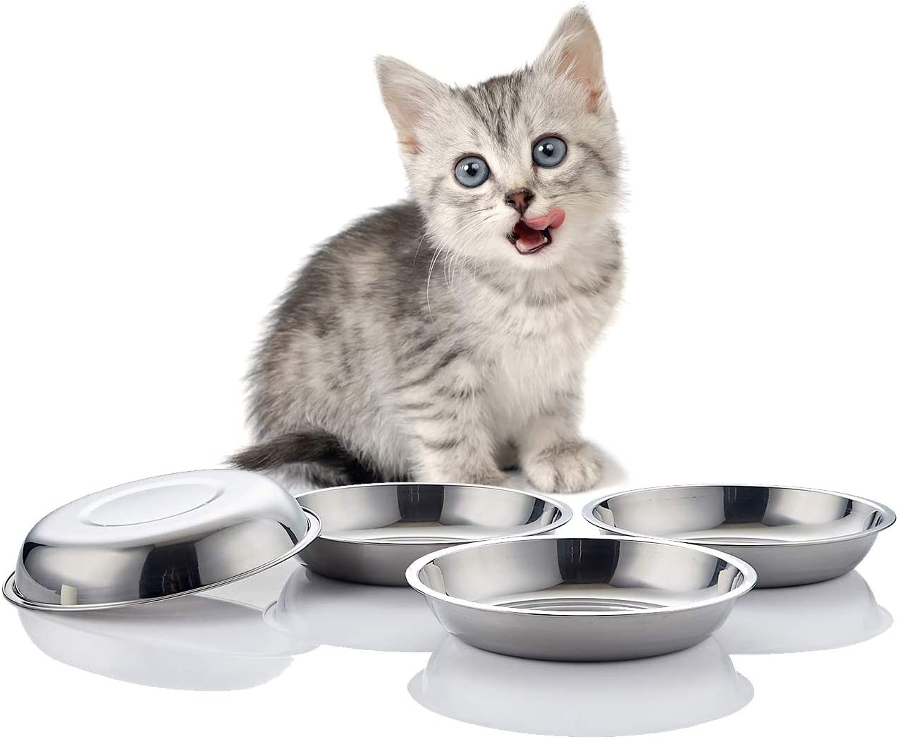VENTION Stainless Steel Whisker Relief Cat Food Bowl, Shallow Metal Cat Bowls Set, 21 Oz Replacement Pet Cat Feeding Dishes for Raised/Elevated Stands, Work for Dog Plate, Dishwasher Safe, Set of 4
