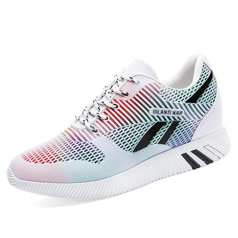 Zapatos de Mujer Spring Fall Mesh Sneakers, Zapatos Ocasionales Respirables de Las Señoras, Zapatillas Deportivas con Cordones de la Aptitud 36 EU|Un