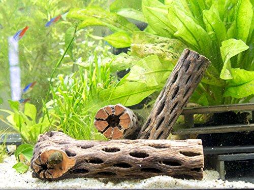 Cholla wood 3 nice pieces of aquarium driftwood for Aquarium wood decoration