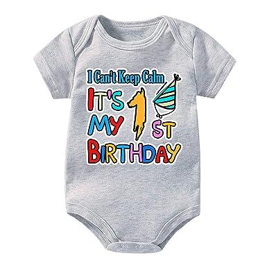 No Puedo Mantener la Calma Es mi Primer cumpleaños Mono ...
