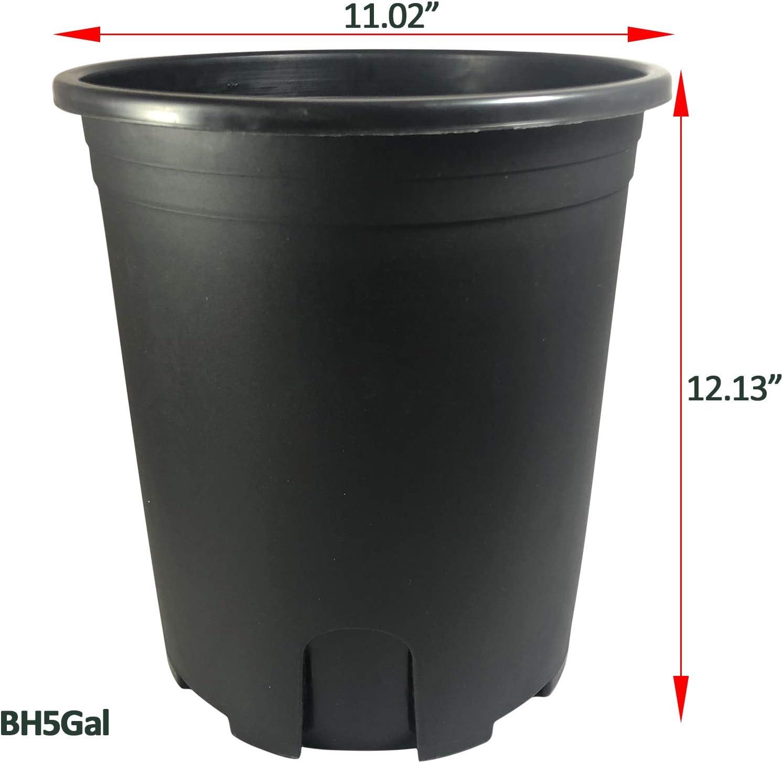 Black Plastic Pot Vegetable Flower Fruit Nursery Plant w//Root Control for Nursery Planter Flower Indoor Outdoor 10, 1 Gallon
