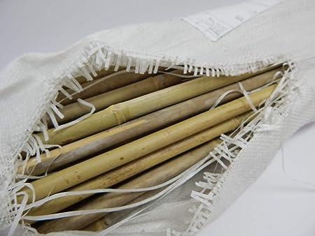 50//Pack Grower/'s Edge Natural Bamboo 8 ft Bulk