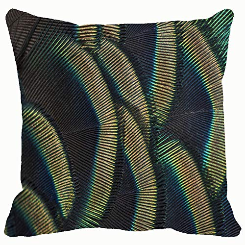 - DWone Hat Green Peacock Birds Feathers Close Details Abstract Abstract Abstract Animals Wildlife Abstract Animals Wildlife Decorative Pillow Case Home Decor Pillowcase (18x18 Inches) Colourful