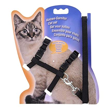 Amazon.com : Alisena 5 Colors Adjustable Pet Cat Nylon Collar Lead Leash Pet Harness Safety Belt Travel Straps for Indoor Outdoor Use : Pet Supplies