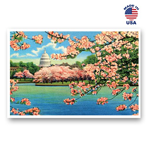 WASHINGTON REPRINTS postcard postcards identical