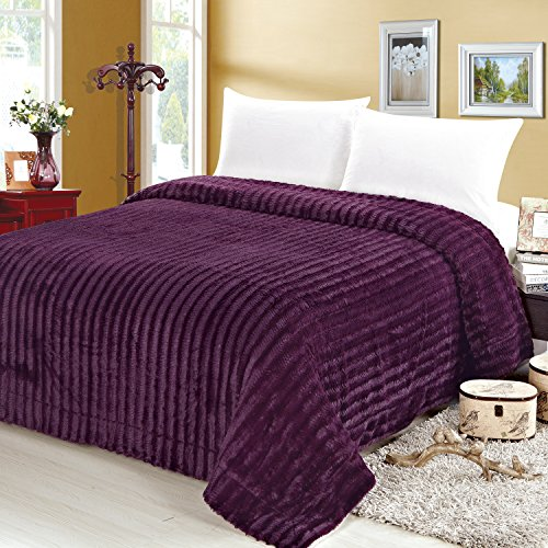 Sweet Home Collection Reversible to Mink Decorative Blanket, Twin, Ribbed, Plum (Collection 64 Inch Tv)