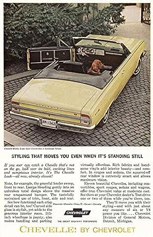 1964 Chevrolet Chevelle Malibu Sport Convertible: Styling, Chevrolet Print Ad - 1964 Malibu Convertible