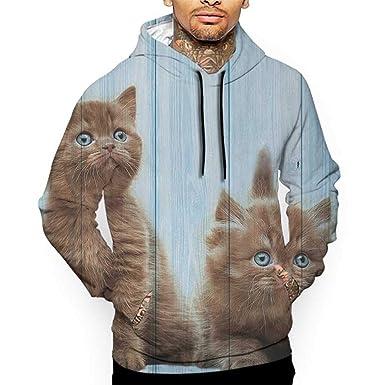 b5c59ea9ac1a Hoodies Sweatshirt Men 3D Print Animal,Baby Kitten Siblings Lovely Animals  Creatures Best Friend Pattern
