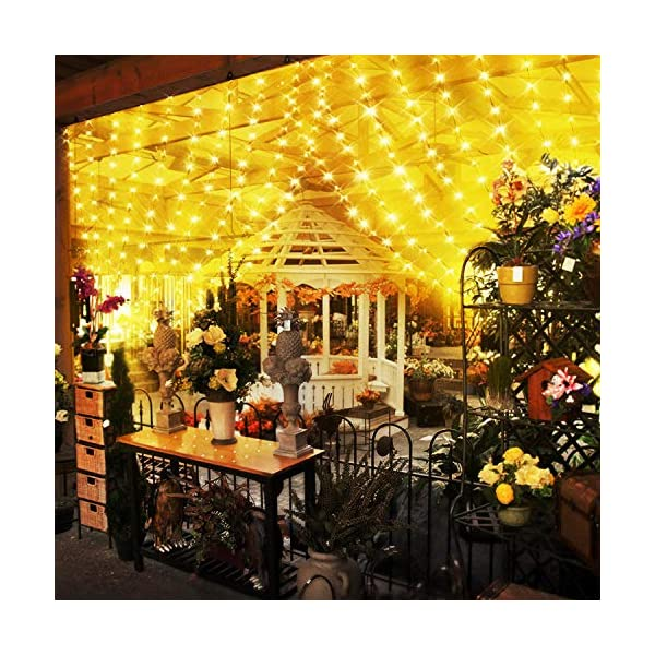 Fenvella Tenda Luci, 3m*3m Tenda Luminosa con 8 Modalitàcon, 300 Led e IP65 Impermeabile Luci Natale Esterno e Interno Adatto a Balcone, Salotto, Giardino,Terrazza. 7 spesavip