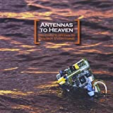 You Have 6 Weeks to Destroy Everything by Antennas to Heaven (2011-09-12)