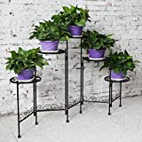 HLC 5 Tier Classic Plant/Flower Stands Suitable for Indoor and Outdoor
