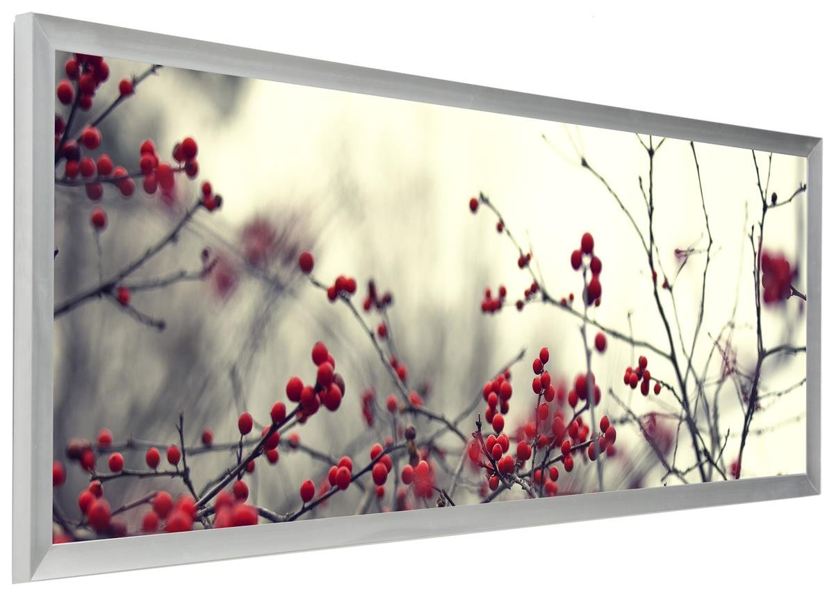 Displays2go PNFA40135S Pano Photo Frame for Panoramic Pictures, 40 x 13.5''