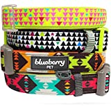 "Blueberry Pet Summer Collars for Dogs 5/8"" S Vintage Tribal Pattern Adjustable Basic Neoprene Padded Dog Collar in Extravagant Green, Matching Leash & Harness Available Separately"