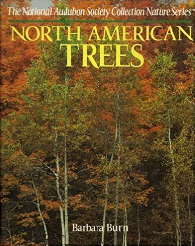 North American Trees (The National Audubon Society Collection Nature Series), NATIONAL AUDUBON SOCIETY